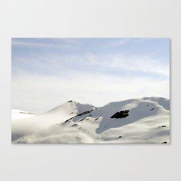 ELTON Canvas Print