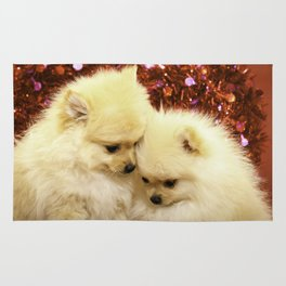 Two Pomeranian Puppies Snuggling Each Other in Front of a Red Heart Valentine's Day Background Rug