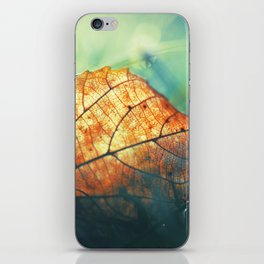 Autumn Gift iPhone Skin