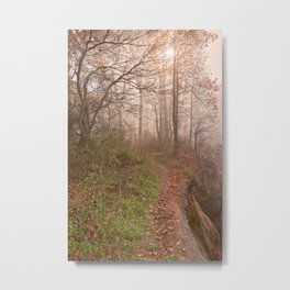 Misty North Point Trail Metal Print