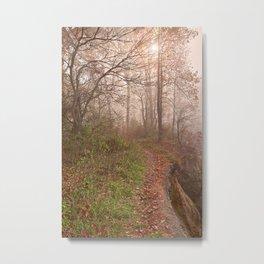 Misty North Point Trail Metal Print
