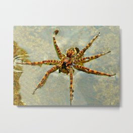 Creepy Spider Metal Print
