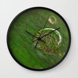 Nature's Magnifying Glass Wall Clock