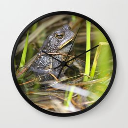 Toad in the pond Wall Clock