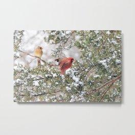 Red Cardinal Rising Metal Print