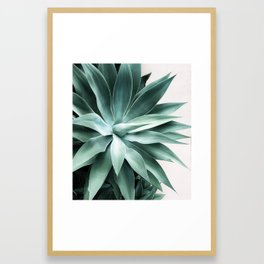 Bursting into life Framed Art Print