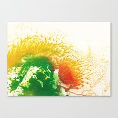 Brilliance Canvas Print