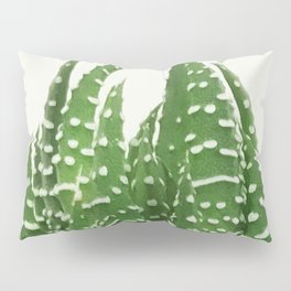 Haworthia Pillow Sham