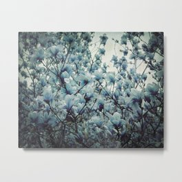 Magnolia Blues Metal Print
