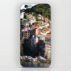 Cinque II iPhone & iPod Skin