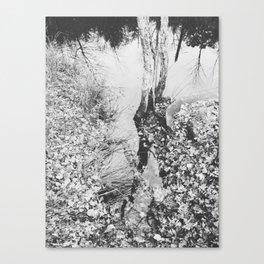 Autumn 12 Canvas Print