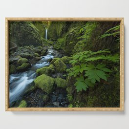 USA Mossy Grotto Falls Ruckel Creek Columbia River Gorge Oregon Stream Nature Moss brook Creeks Streams Serving Tray