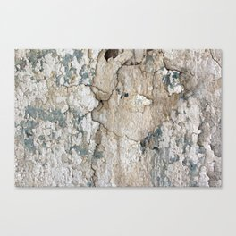White Decay IV Canvas Print