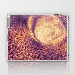 Intestines Laptop & iPad Skin