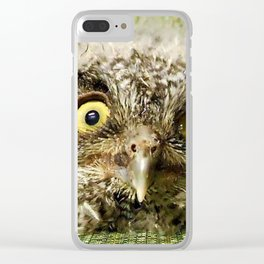 Western Screech Owl Baby Clear iPhone Case