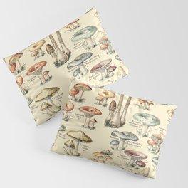 Trippy Vintage Mushroom Chart // Champignons by Adolphe Millot XL 19th Century Science Artwork Pillow Sham