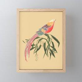 Fanny the pheasant  Framed Mini Art Print