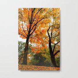 Fall - Beautiful couple Metal Print