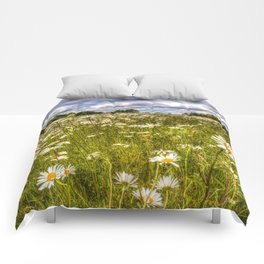 Daisy Field Comforters