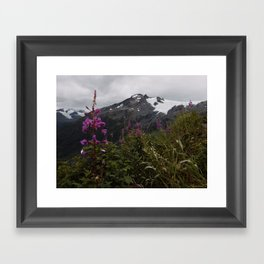 Kenai Fjords National Park Framed Art Print