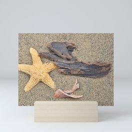 Driftwood and Shells Mini Art Print