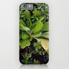 nature and greenery 17 iPhone Case