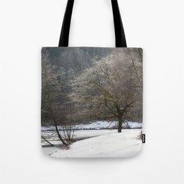 Frozen Mallards Pike Tote Bag