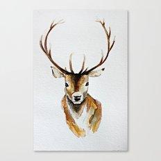 Buck - Watercolor Canvas Print