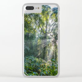 Sun Rays in a Forest Clear iPhone Case