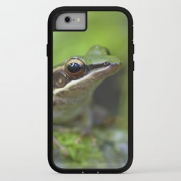Macro photograph of a common greenback frog taken in Malaysia iPhone Case