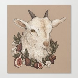 Goat and Figs Canvas Print