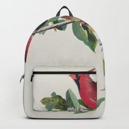 Cardinal Grosbeak from Birds of America (1827) by John James Audubon etched by William Home Lizars Backpack