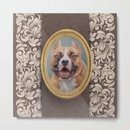 Old Gentleman. Amstaff Dog portrait in gold frame Metal Print