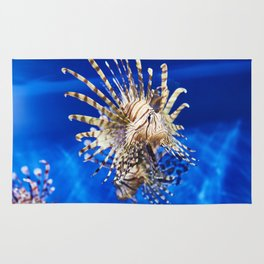 Poisonous lionfish in blue water sea Rug