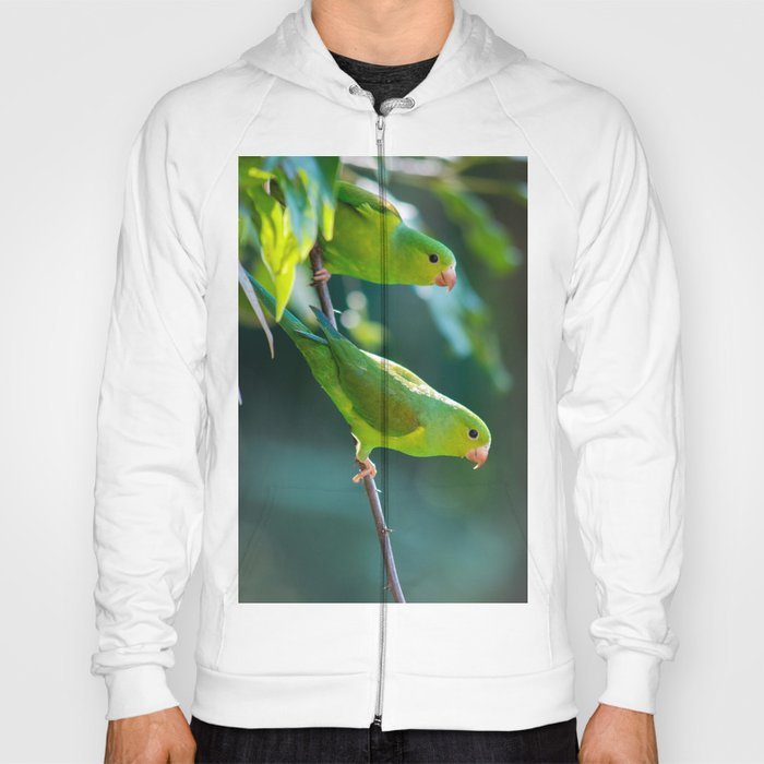 Parakeet Hoody