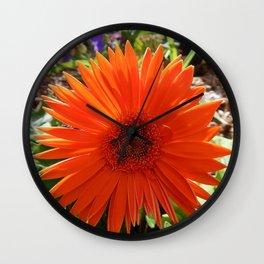 Bright Orange  Gerbera Daisy Wall Clock
