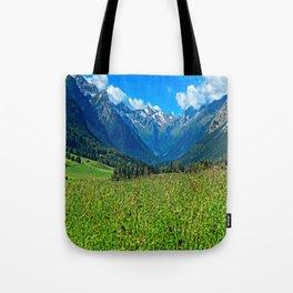 Bergwiese mit Talschluss Tote Bag