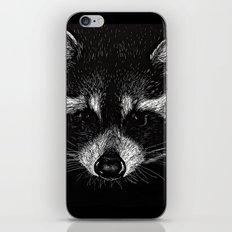 The Curious Raccoon iPhone & iPod Skin