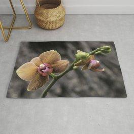 Orange Orchid Rug