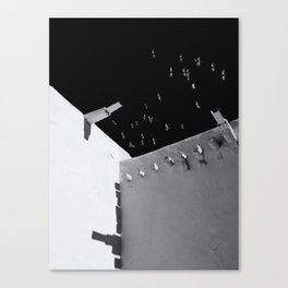 Mission Flight 2 Canvas Print