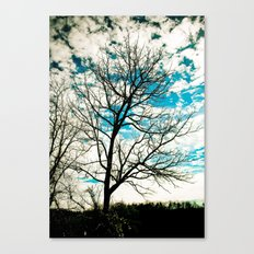 Bare Tree & Clouds Canvas Print