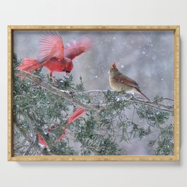 Cardinals Jostling on a Branch in a Snow Storm Serving Tray