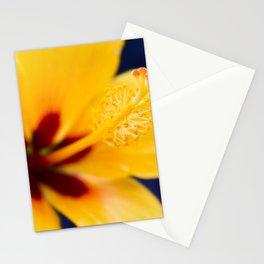 Hibiscus Lemon Drop Tropical Fancy Flowers Stationery Cards