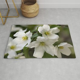 White flowers of apple trees on the branch Rug