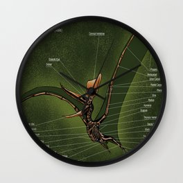 Male Pteranodon Sternbergi Skeleton Wall Clock