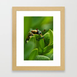 & what's your name? Framed Art Print
