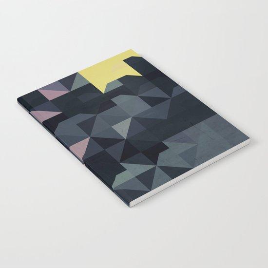 stygnyyt Notebook