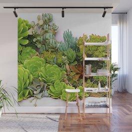 Avant-Garde Epic Succulent Succulents' Garden Wall Mural