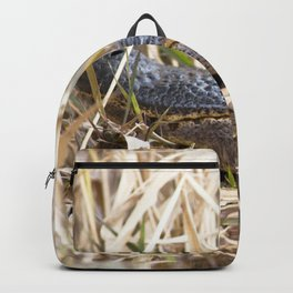 Watercolor Alligator 04, Okefenokee Swamp, Geogia, The Sunbather Backpack