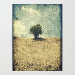 Lonely Tree in the Center Poster